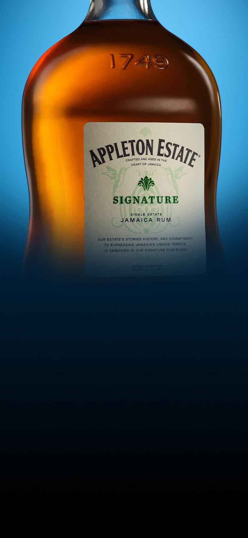 Appleton Estate Signature Blend Appearance